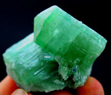 190 CT undamaged & Terminated Paraiba Blue Tourmaline Crystals Bunch @ Afghani
