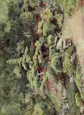 A4 Photo Tyndale Walter 1855 1943 Buddhist Temple Garden Kofu Japanese Gardens 1