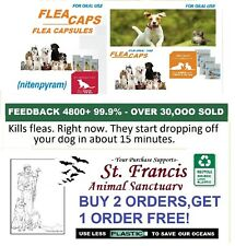 150 LARGE Equal To Same Ing. in FastcapsCapstar capsules Flea Treatment  OTC