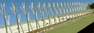 Poly Carbonate Bird Spikes - Roosting Deterrent