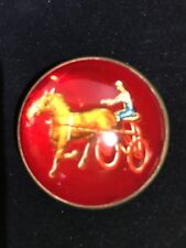 ANTIQUE RED GLASS DOMED BRASS ROSETTE HARNESS RACING HORSE BROOCH