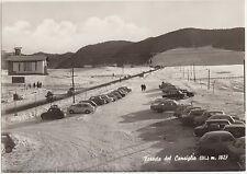 FORESTA DEL CANSIGLIO m.1027 (BELLUNO)