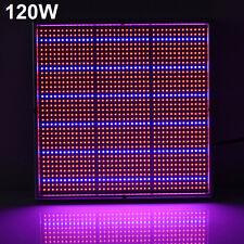 120W 1365-LED Plants Grow Light Hydroponic Vegs Flower Aquarium Garden Lamp W
