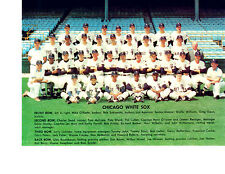 1968 CHICAGO WHITE SOX TEAM 8X10 PHOTO APARICIO JOHN ILLINOIS  BASEBALL