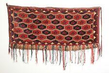 Antique Turkmen Ersari Animal Trapping Torba; Late 19th Century; Beshir; Mafrash