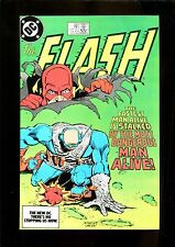 Flash 338 (9.2) 1St App Big Sir Dc (b049)