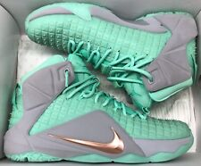 the best attitude 6715d 602d1 Style  Basketball Shoes. Nike Lebron XII 12 ID Wolf Grey Mint Green Miami  Dolphins Sz 10.5