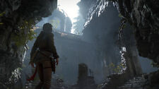 Rise of the Tomb Raider PC [Steam Key] No Disc