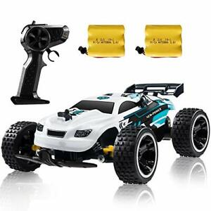 High Speed Remote Control RC Buggy Racing Car with 2 Batteries, White