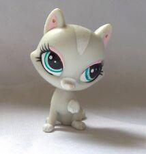 LITTLEST PETSHOP PET SHOP HASBRO CHAT CAT GRIS ET BLANC ASSIS YEUX VERT RARE