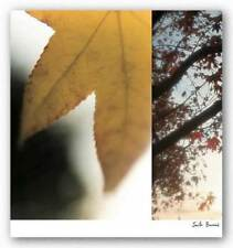 Autumn Leaves II Jennifer Broussard Art Print 18x18