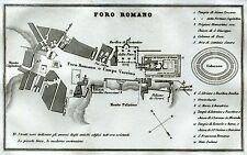 Roma:Pianta del Foro Romano.Carta Topografica.Acciaio.Artaria.Stampa Antica.1857