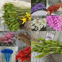 20pcs Natural Dried Flowers Bouquet Bunch Flower For Home Party Decor Craft Gift