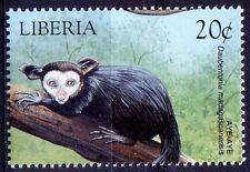 Aye-aye,  lemur, Wild Animals, Liberia 1999 MNH -  J13