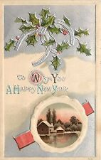 Wish You a Happy New Year horseshoes Postcard