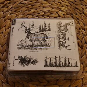STAMPIN UP Noble Deer Retired STAMPS SET Rare Forest Pinecone Trees Stag New USA