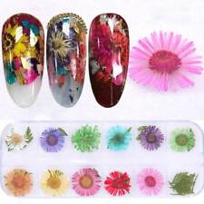 12 Colors Real Nail Dried Flowers Nail Art Decoration Design DIY Tip Manicure