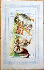 1900 Chicoree/Moka Advertising w/Victorian Diecut Scrap: Cats/Kittens Playing-22