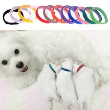 Adjustable 12 pcs Multicolor Pet Dog Cat Neck Collar ID Identification Puppy