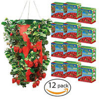 Topsy Turvy STRAWBERRY HANGING PLANTER Upside Down Swivel Top - 12 PACK