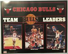 Chicago Bulls Team Leaders Poster Grant Michael Jordan Scottie Pippen 16x20 1993
