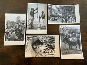 "Lot of 5 Vintage Real Photo Postcards ""Glimpses of Haiti"" Crowds Donkey Old Cars"