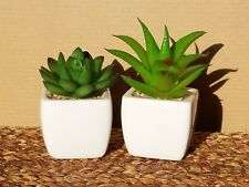 New listing 2-Piece Set Artificial Succulents in White Ceramic Pots Mini Fake Cacti Plants