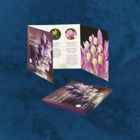Irland - Irish Wildflowers - KMS 2020 BU - 3,88 Euro - 1 Cent - 2 Euro