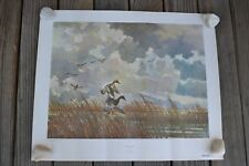 """Eric Sloane Vintage Reproduction Print """"Canvasbacks"""" No. 193 Made in USA 1954"""