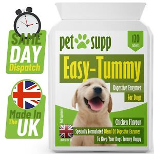 Healthy Digestion For Dogs ⭐ Health Supplement for Dogs Digestion ⭐ 120 Tablets