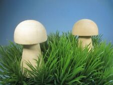 "Unfinished Wood Mushrooms 2 piece pkg. 2 3/4"" tole paint Fairy Garden House"