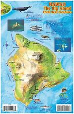 Hawaii The Big Island Map & Reef Creatures Laminated Fish Card by Franko Maps