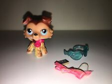 Littlest Pet Shop LPS Collie dog Sage #58 Paw down RARE authentic