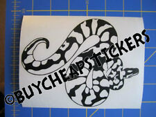 Ball Python - Boa - Snake Vinyl Decal - Sticker 5x6 - Any Color