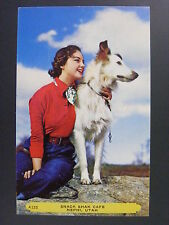 Nephi Utah Ut Snack Shak Cafe Advertising Woman & Collie Dog Postcard 1950s Vtg