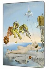 Dream caused by The Flight of Bee Paint By Salvador Dali REPRINT ON Canvas Art