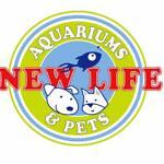 newlife-aquarium-bulleen