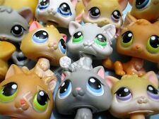 Littlest Pet Shop Lot of 2 RANDOM Baby Kitten Kitty Cats Authentic Lps Has Wear