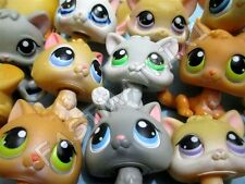 Littlest Pet Shop LOT of 2 RANDOM Baby Kitten Kitty Cats Authentic..Has Wear!