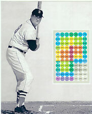RARE TED WILLIAMS BOSTON RED SOX  8X10 PHOTO  BASEBALL HITTING ZONE CHART