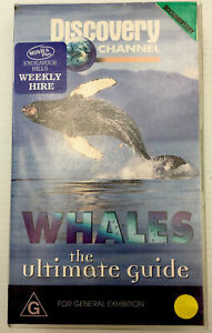 Discovery Channel Whales VHS Video Cassette Tape Clear Small Box PAL G