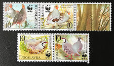 Jugoslavia Yugoslavia 2000 ** Uccelli/Birds WWF Nature post FRESCHI MNH