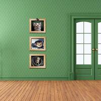 Wandtattoo Wandsticker Bunt Kinderzimmer Wohndeko Bilderrahmen Kätzchen 3D Neu