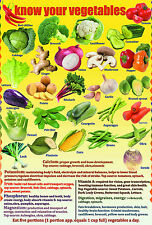 A2 Size LAMINATED five a day VEGETABLES poster children kids educational kitchen