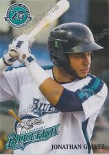 2017 Bridgeport Bluefish Jonathan Galvez Atlantic League Independent