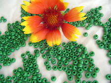 5/0 French Seed Beads Sioux Green Opaque /1oz