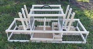 Cage avec 2 piège // Piège à oiseaux // Cage à oiseaux de chasse