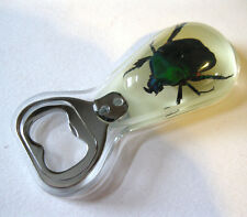 Real Jade Beetle Scarab Insect Glass Goth Bottle Opener Strange Gift
