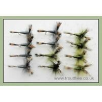 Wulff Trout Flies, 12 x Olive & Grey, Size 10. Spring Trout Flies, Fishing Flies