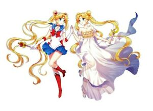 "Sailor Moon Patch Iron On Transfer Anime Applique 3.94"" X 2.56"" Pretty Guardians"